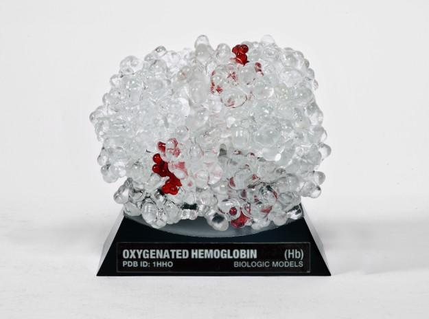 Oxygenated Hemoglobin Hb
