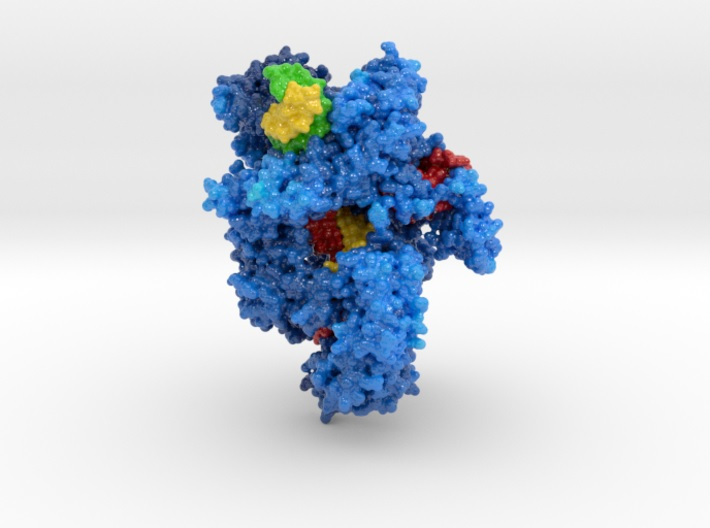 5b43, CRISPR Cpf1, Biologic Models