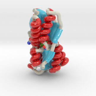 Ribose Binding Protein, Biologic Models