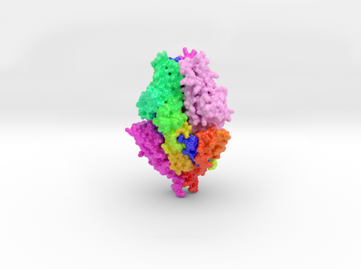 RSV, Fusion, Glycoprotein, Prefusion, 5TDL