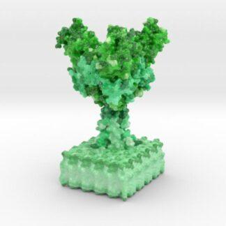 Ebola Virus Ectodomain 3d printed