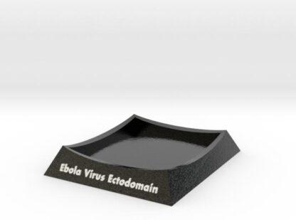 Ebola Virus Base 3d printed