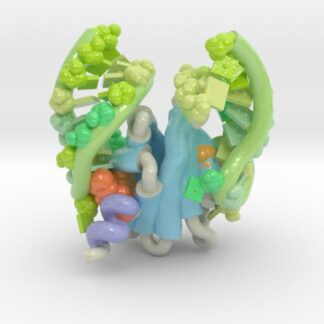 RsmA/CsrA RNA recognition 3d printed