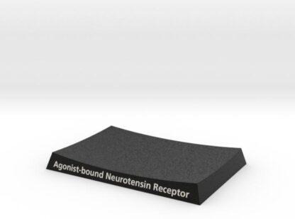Neurotension Receptor Base 3d printed
