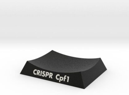 CRISPR Cpf1 AR Base 3d printed