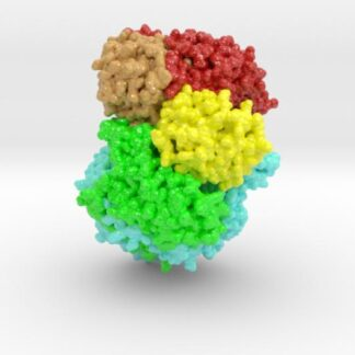 mdm_L-Protein_VSV_ml_vB4 3d printed