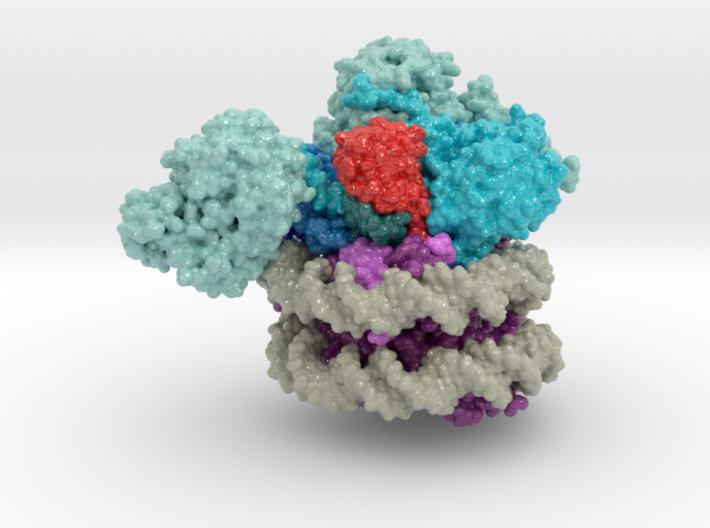 Nucleosome 6UH5 3d printed
